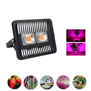 100W Full Spectrum COB LED Plant Grow Flood Light AC220-240V Waterdicht voor Outdoor Indoor