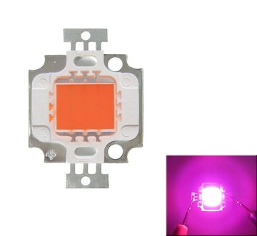 Full Spectrum 10W Roze LED Plant Grow Light Lamp Chip voor Tuin 9-12V